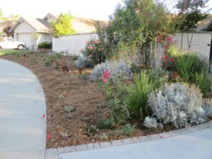 Housefront landscaping